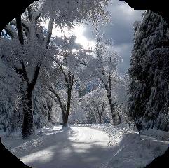 winter landscape winterlandscape snow frost freetoedit