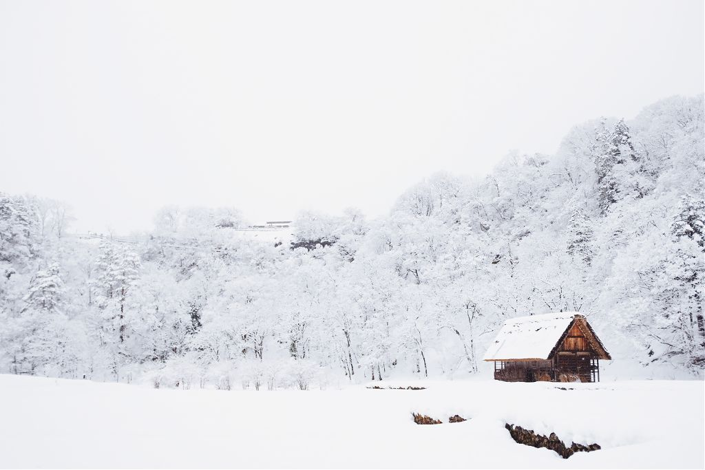 A remix a day keeps the doctor away! Unsplash (Public Domain) #snow #winter #christmas #background #backgrounds #freetoedit