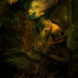 freetoedit enchanting woodland parrot mystical