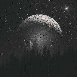 blackandwhite night moon madewithpicsart freetoedit