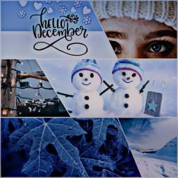 winter wintertime winterforest challenge challengeoftheday