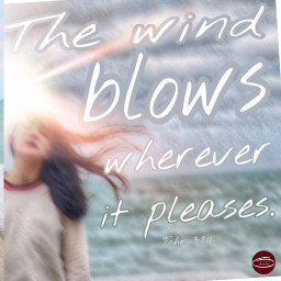 freetoedit verse bibleverse wind blows ircwindyportrait windyportrait