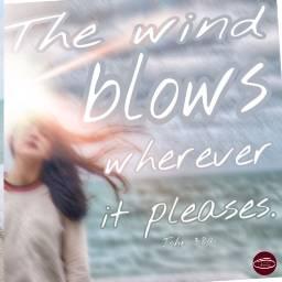freetoedit verse bibleverse wind blows ircwindyportrait windyportrait