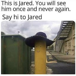 hi jared meme
