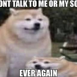meme never doggo