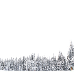 nature winter snow background backgrounds freetoedit