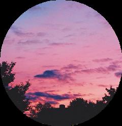 sky aesthetic pink purple tree freetoedit