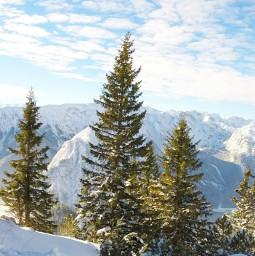 freetoedit winter snow outdoors nature