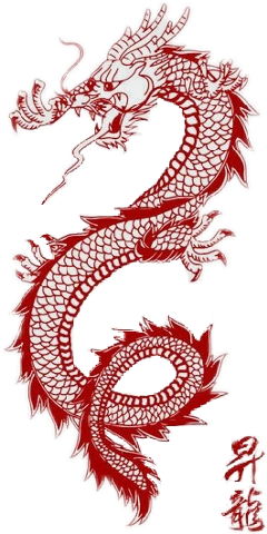 dragon tattoo redaesthetic sticker freetoremix freetoedit