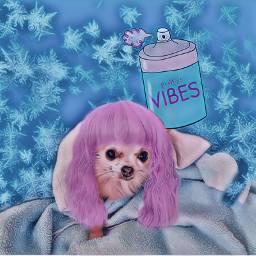 freetoedit funtime positivity stickers dog