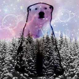 winterforest polarbear freetoedit