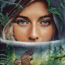 freetoedit forest woman hawk trees ircdeepinthewoods