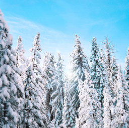 snow winter nature background backgrounds freetoedit