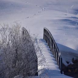 angeleyesimages snow winter seasons bridge freetoedit