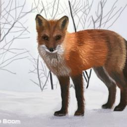 freetoedit mydrawing madewithpicsart winter fox