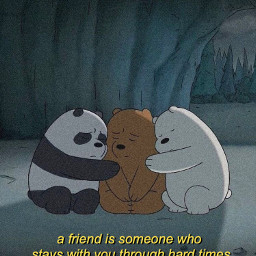 webarebears friends quotes picture bears