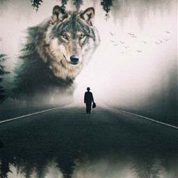 freetoedit myedit doubleexposure person wolf