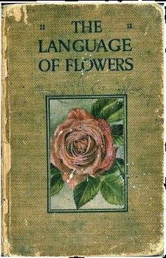flower book floweraesthetic bookaesthetic freetoedit