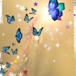 freetoedit myedit butterflies butterflys lights