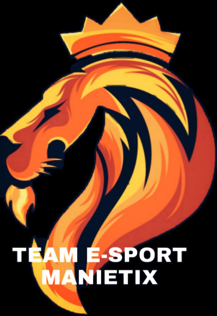 #team manietix