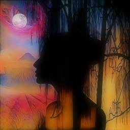 freetoedit colourful artisticedit january2020 silhouette ircelegantsilhouette