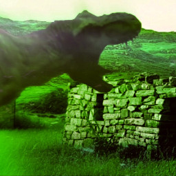 trex grassland ruin ruins running freetoedit