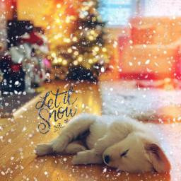puppy dog letitsnow holidays freetoedit