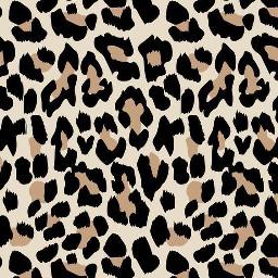 vsco print background cheetah photography freetoedit