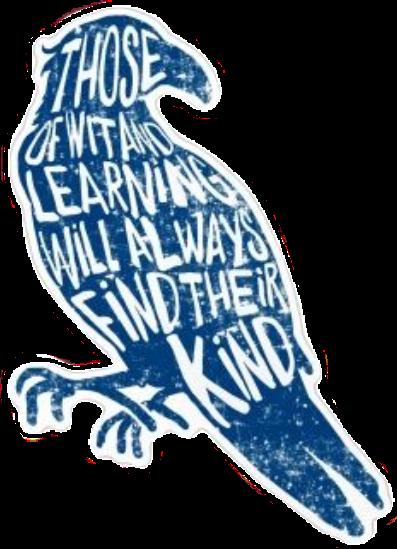 #ravenclaw #ravenclawhouse #ravenclawpride #ravenclawaesthetic #harry_potter #harrypotter