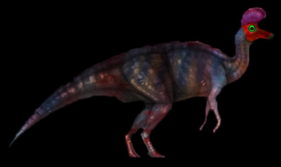 #lambeosaurus#dinosaur#hadrosaur#dinosaurs