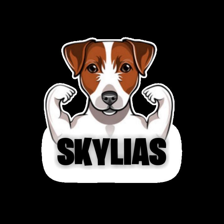 Skylia#skylia