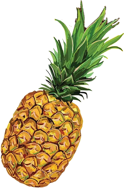 #pinapple #fruit #tropical #tropicalfruit #sticker #stickers #picsart #yellowaesthetic #aesthetics #aesthetic #foodaesthetics #fruitaesthetics #freetoedit