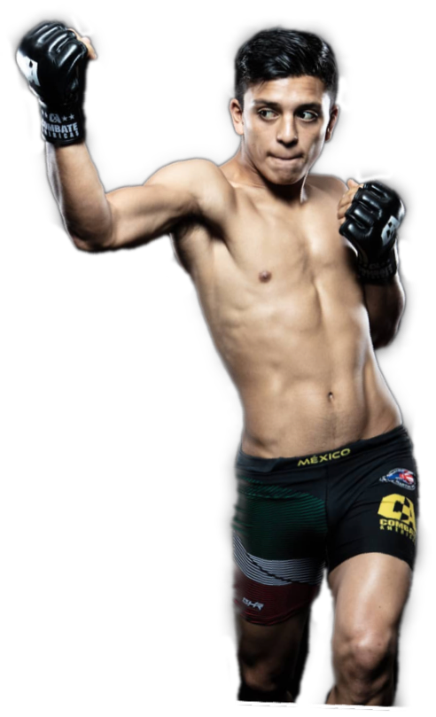 Mexican ufc fighter #freetoedit