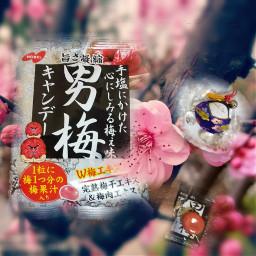 freetoedit plumblossom plumcandy japanese fukumusume