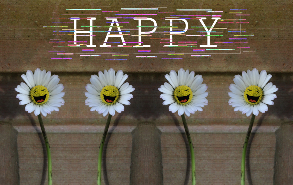 Have an awesome day #daisy #flower #mirroreffect #happiness #freetoedit