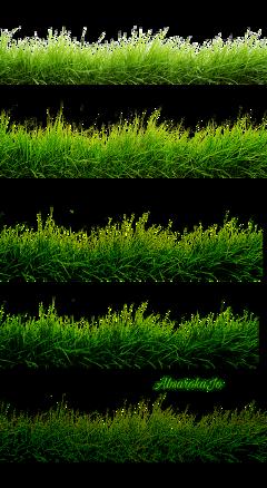 grass green freetoedit