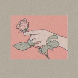 freetoedit aesthetic aestheticwallpapers aestheticrose aestheticstyle