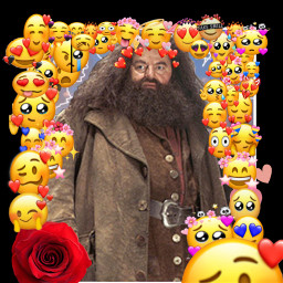 harrypotter hagrid lookingood love freetoedit