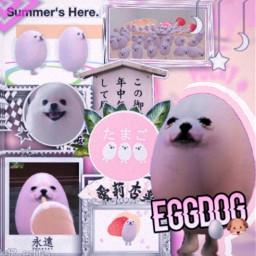 eggdog pinkaesthetic japanese pinkedit cute