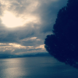 freetoedit clouds tree grey sky