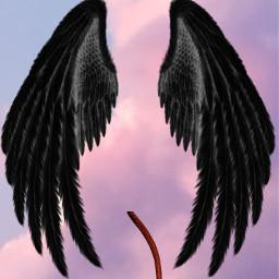 wings angel devil wing satan