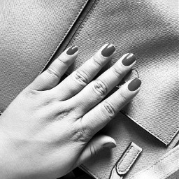 nails blackandwhite hands bag