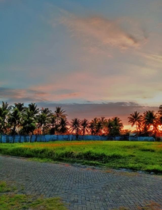 #freetoedit #myclick📷#sunset#sky#clouds#coconuttree  #edited#myedit#madewithpicsart #fatal2#picsarteffects #neighborhood