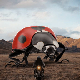 freetoedit giantanimals ladybug motorcycle