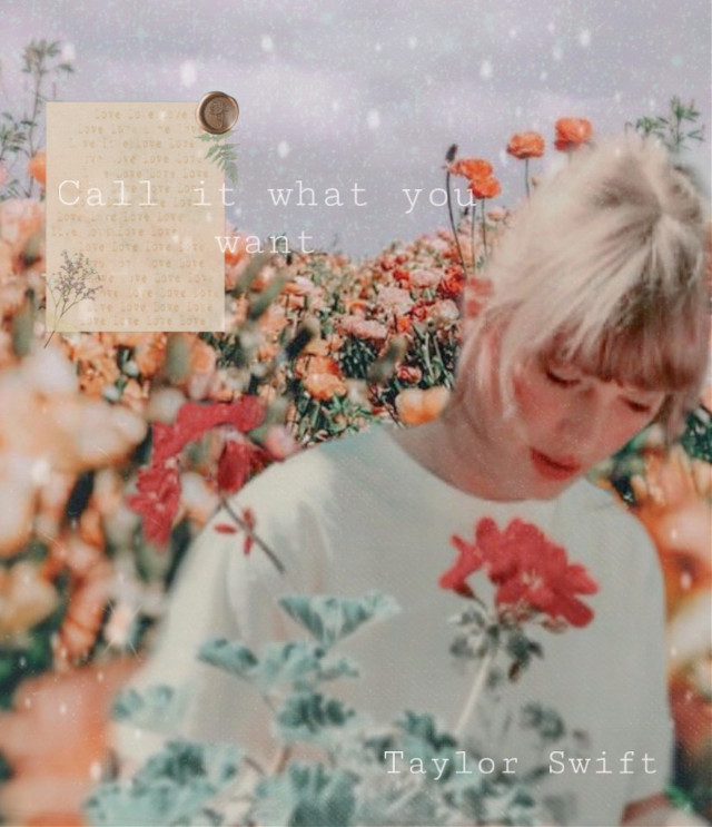 For @taylordaylight13 's contest. 💗💗💗 #freetoeditl#taylorswift#aesthetic#taylor#flowers#lyrics#callitwhatyouwant #freetoedit