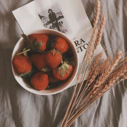 myphotography strawberry vintage goodmorning