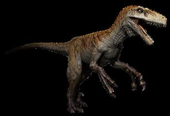 dinosaur raptor utahraptor carnivore dino freetoedit