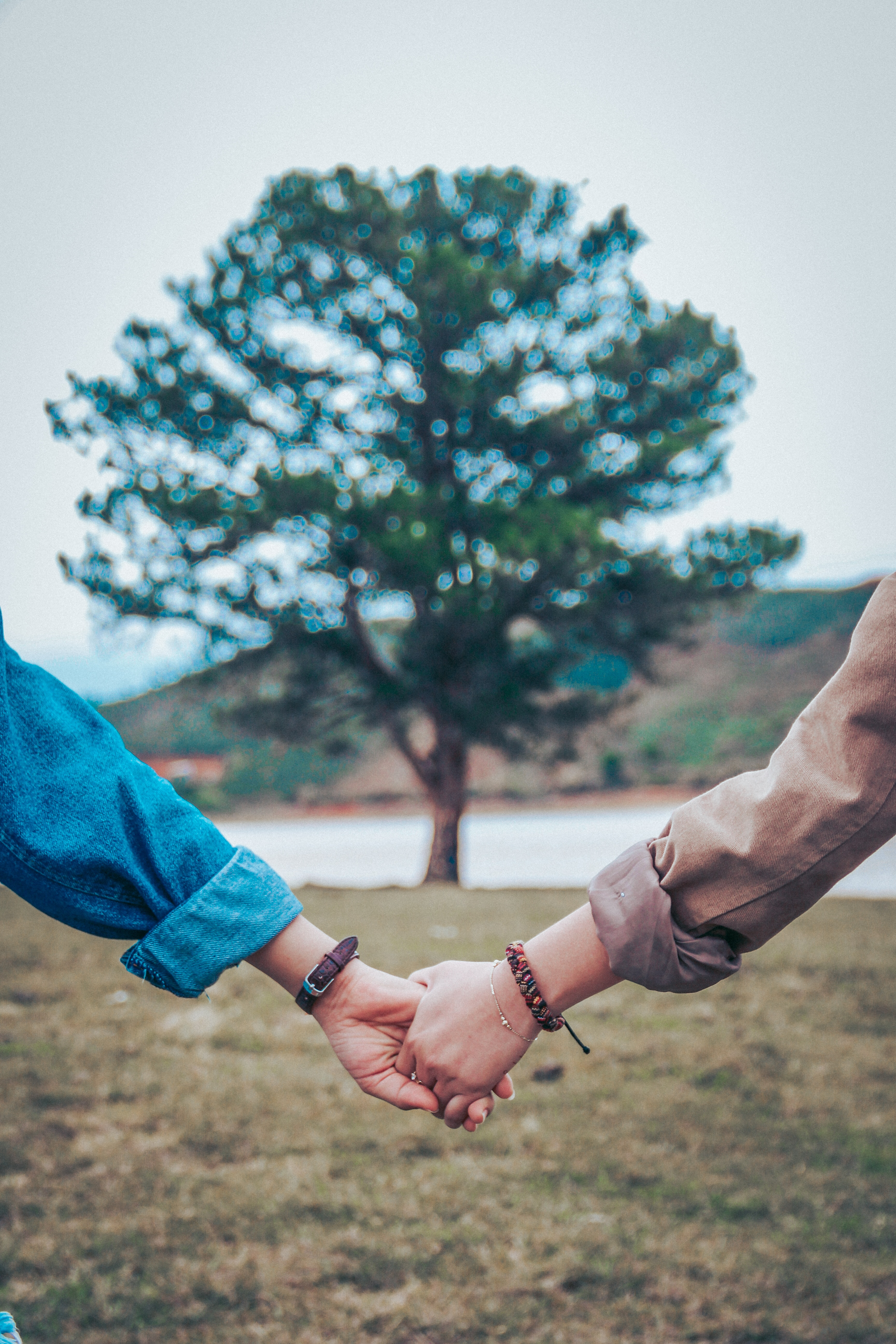 Unleash your creativity and remix this image!Unsplash (Public Domain) #hands #couple #love #people #valentinesday #freetoedit