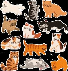 cats kitty sticker kittylove catslover freetoedit