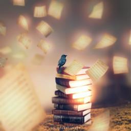 freetoedit book books bird birds forest magic